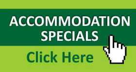 accommodation specials